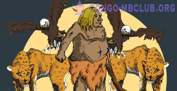 africký zadek trubice